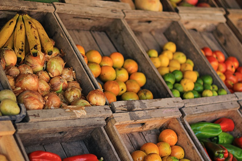 Für sozialen und ökologischen Handel: sozialdemokratische Grundsätze für gerechte Wirtschaftsabkommen