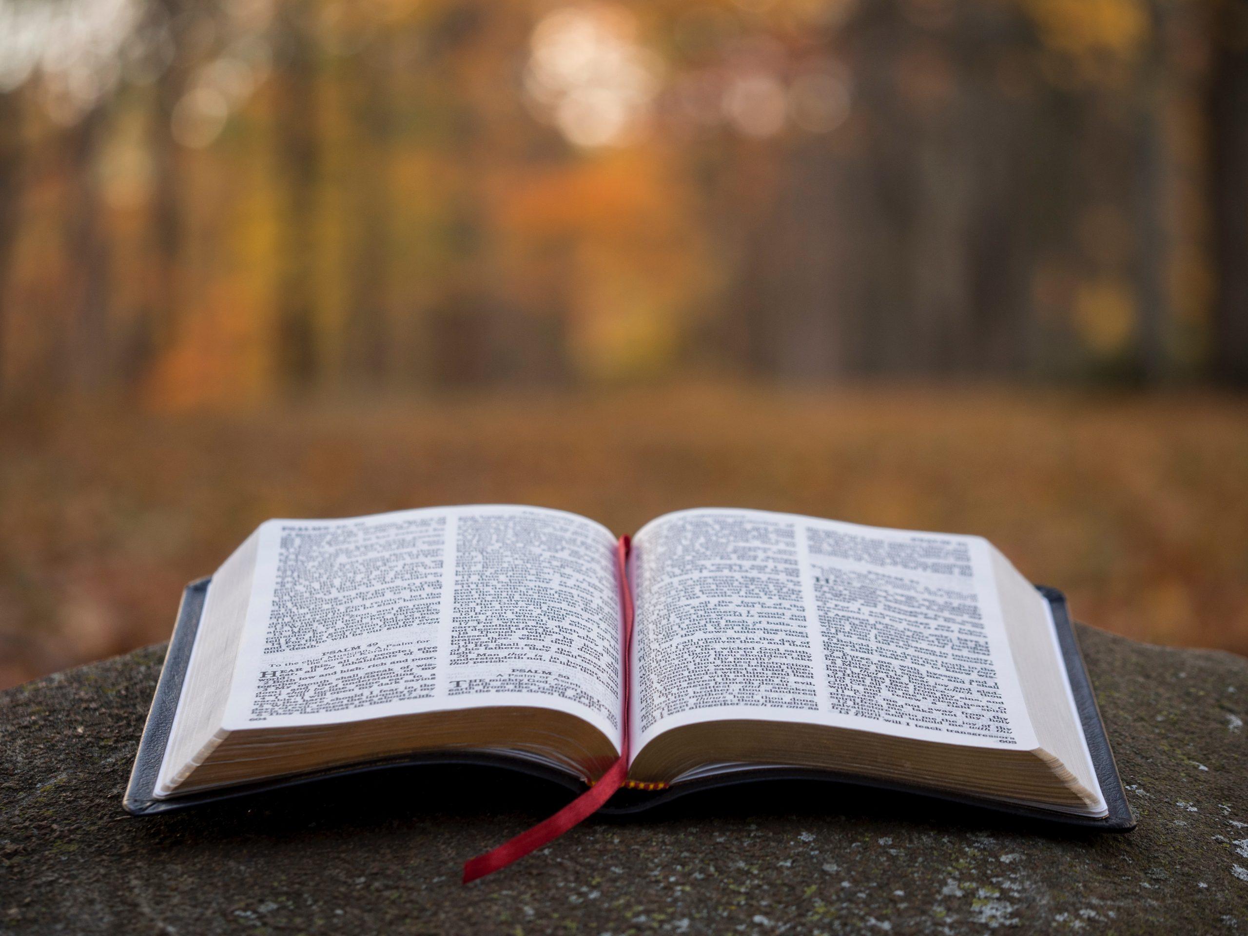 Blasphemie und Toleranz